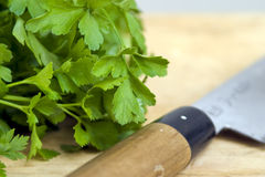 Parsley and knife Royalty Free Stock Photo
