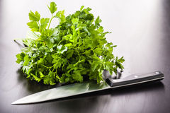 Parsley and knife Stock Photos