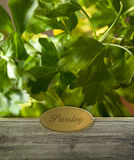 Parsley labeled Royalty Free Stock Photos