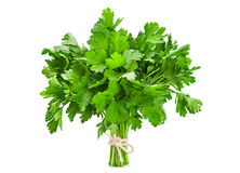Parsley leaf on white Stock Images