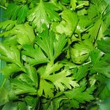 Parsley leaves closeup. On a kitchen table royalty free stock images