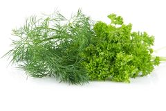 Parsley leaves and dill isolated on white background. Parsley and dill leaves isolated on white background Royalty Free Stock Image