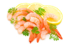 Parsley,lemon and shrimps Stock Photos