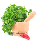 Parsley in mortar and chili pepper Stock Photo