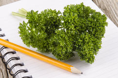 Parsley on an notebook with a pencil Royalty Free Stock Photos