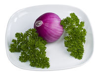 Parsley and Onion Royalty Free Stock Photography