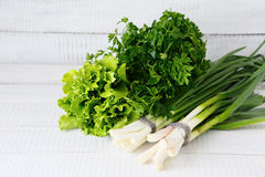 Parsley, onion and lettuce on the boards Stock Image
