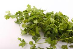 Parsley Pack. Green parsley pack on white background Royalty Free Stock Image