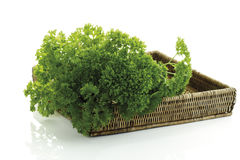 Parsley (Petroselinum crispum) in wood basket, close-up Stock Image