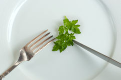 Parsley on the plate close up. Diet concept (parsley on the plate, fork and knife close up shot Stock Photo