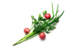 Parsley, radish, spring onions and dill Stock Image