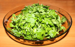 Parsley raw food Stock Photo