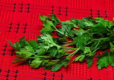 Parsley on red tablecloth Stock Photo