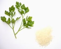 Parsley and rice. On white background royalty free stock photography
