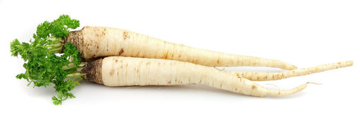 Parsley root Royalty Free Stock Images