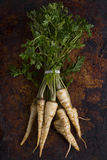 Parsley root with leaves Stock Photography