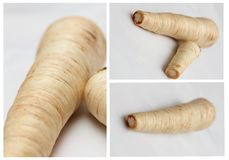 Parsley root mix Stock Photography