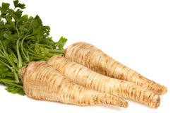 Parsley Root on white background Stock Images