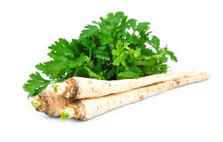 Parsley root. On white background Stock Photo