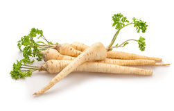 Parsley root Royalty Free Stock Photography