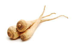Parsley roots Royalty Free Stock Photo
