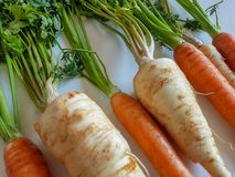 Parsley roots and carrots fresh vegetables isolated, white background, orange yellow green color. leaf, healthy diet. Natural Stock Photography