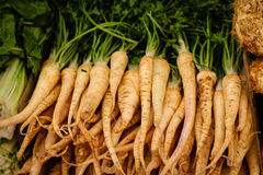 Parsley roots laid for sale Stock Photography