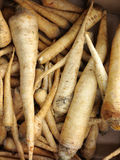 Parsley roots in market as background Stock Photography