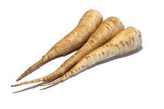 Parsley roots on a white background Royalty Free Stock Image