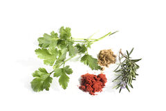 Parsley, rosemary and spices isolated on white Stock Photos