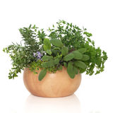 Parsley Sage Rosemary and Thyme Herbs Royalty Free Stock Images
