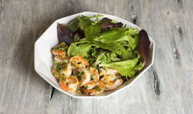 Parsley shrimp salad Royalty Free Stock Photo