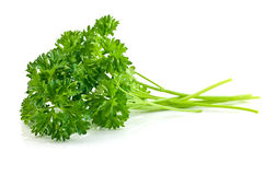 Parsley sprigs stock photography