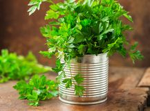 Delicious Parsley sprigs in a brown wicker basket and wooden board. Garden parsley herbs. Organic effective source of anti-oxidant. Parsley sprigs in a brown stock photos