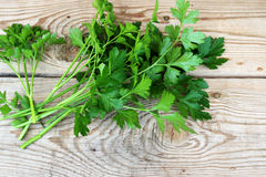 Parsley. Sprigs of parsley on a wooden table Royalty Free Stock Image