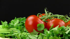 Parsley and Tomato stock video footage