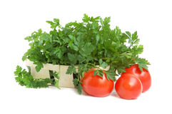 Parsley and tomatoes. Gardening parsley in a small basket and tomatoes on white backgroundin Stock Photo
