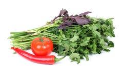 Parsley and tomatos Royalty Free Stock Photos