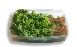Parsley in tray Stock Photos