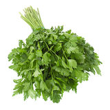 Parsley vegetable herb on white Stock Images
