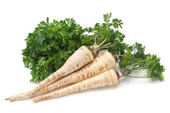 Parsley vegetable root on white Stock Photo