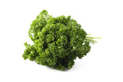 Parsley on white. Parsley, isolated on white background Royalty Free Stock Photos