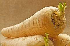Parsnip Stock Photography