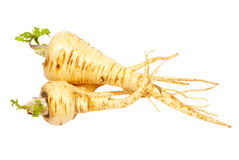Parsnip Royalty Free Stock Photography