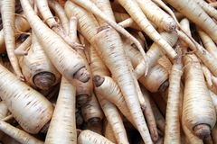 Vegetables. Parsnip Royalty Free Stock Photo