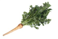 Parsnip With Green Leaves Isolated On White