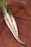 Parsnips. Fresh parsnips on a wooden background stock photo