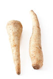 Parsnips Royalty Free Stock Images