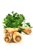 Parsnips Stock Image