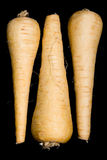 Parsnips Royalty Free Stock Photography